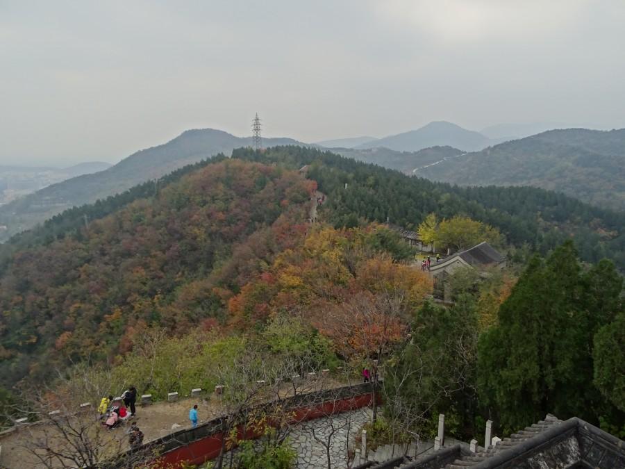 Перспектива от храма