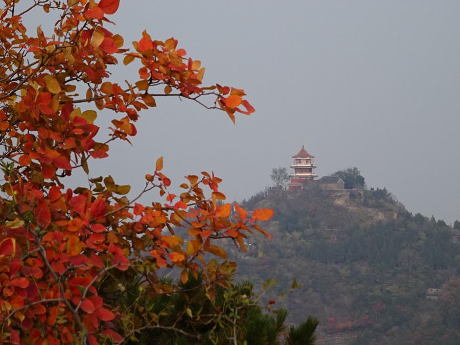 Храм на фоне листьев