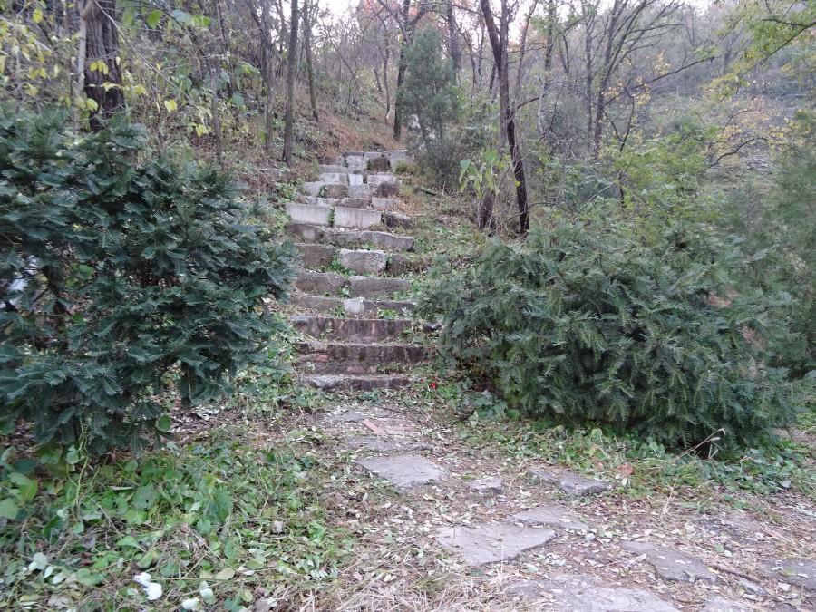 Лестница на холм напротив статуи