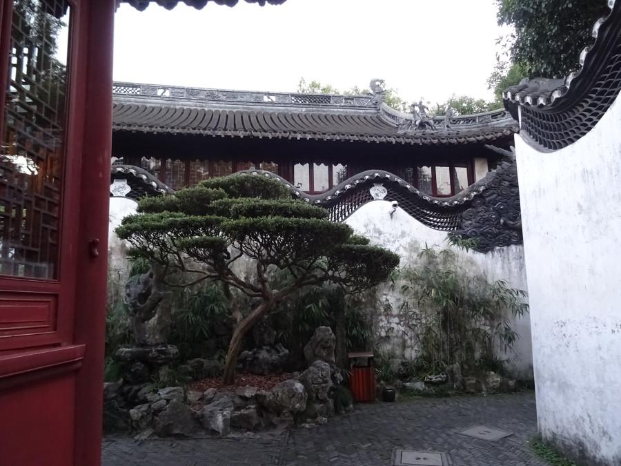 Парк Ююань 4