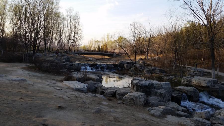 Лесной парк - пороги перед мостом