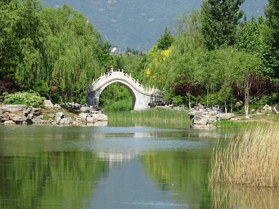 Парк - горбатый мостик