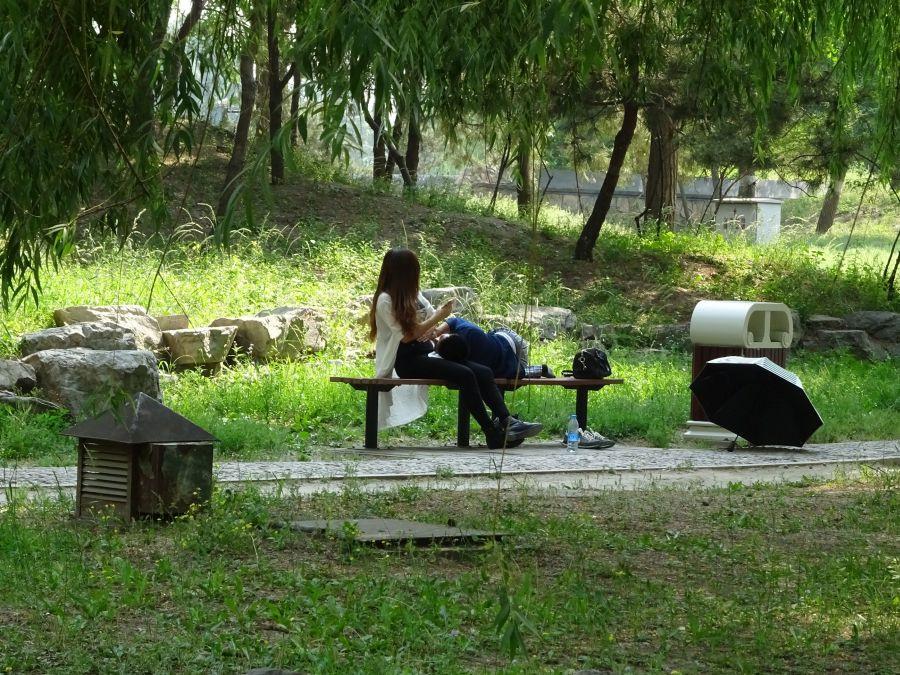 двое на скамейке