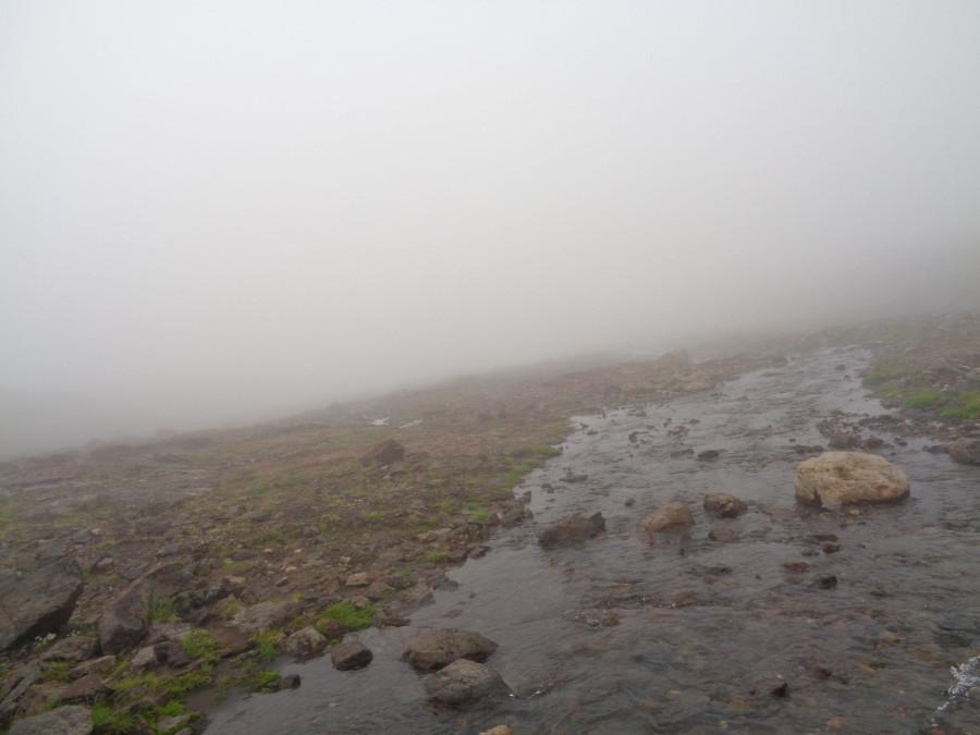 Ручей в тумане