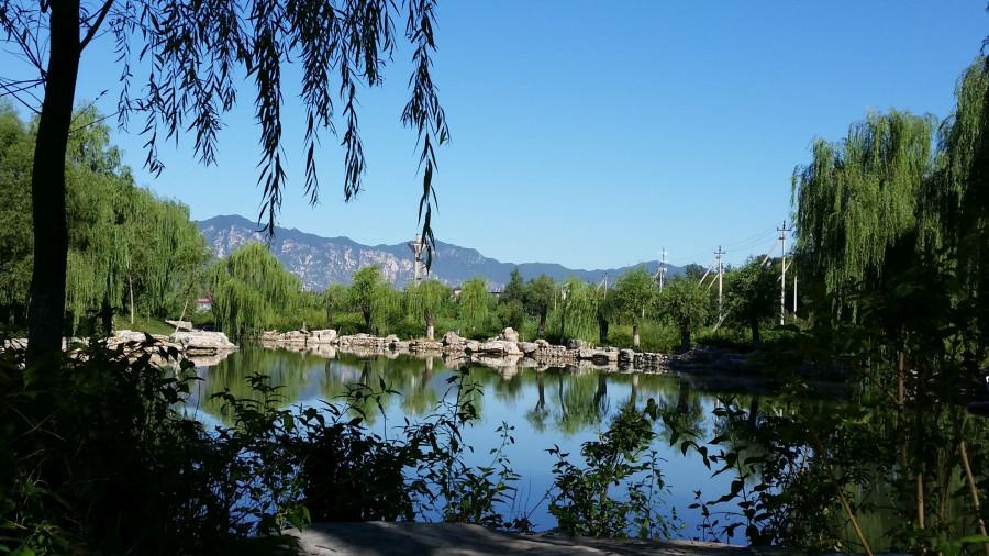 Дневной парк