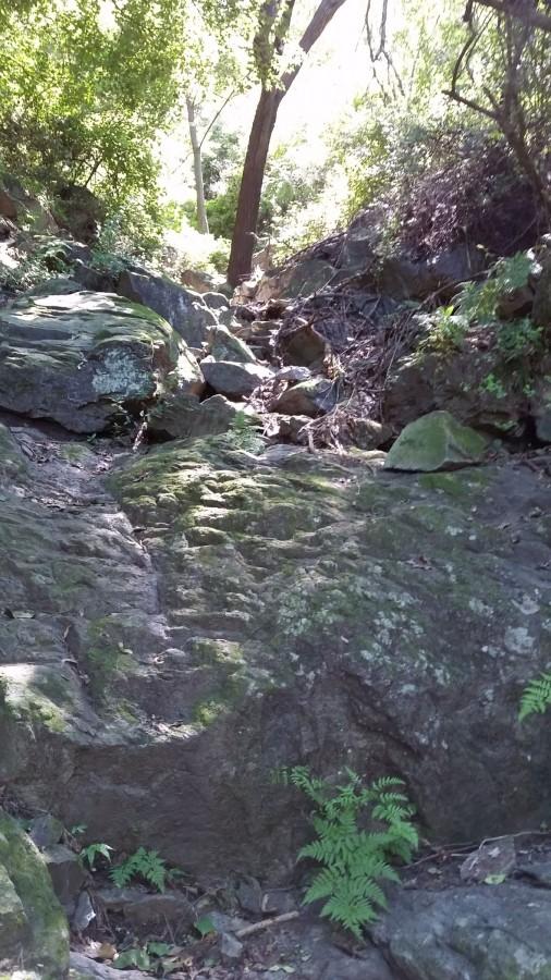 Тропа каменная