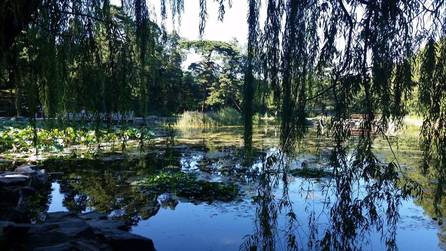 Романтическое озеро - 1