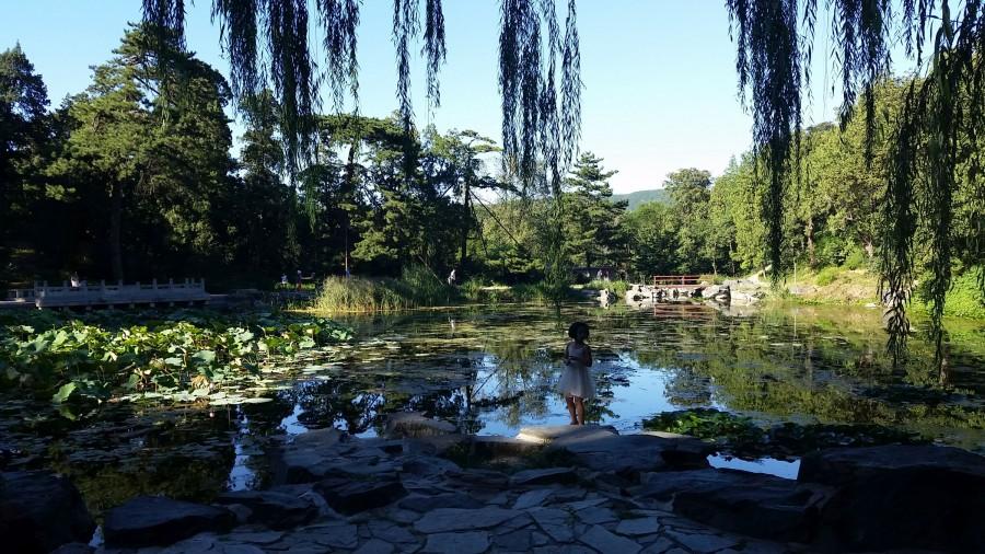 Романтическое озеро - 2
