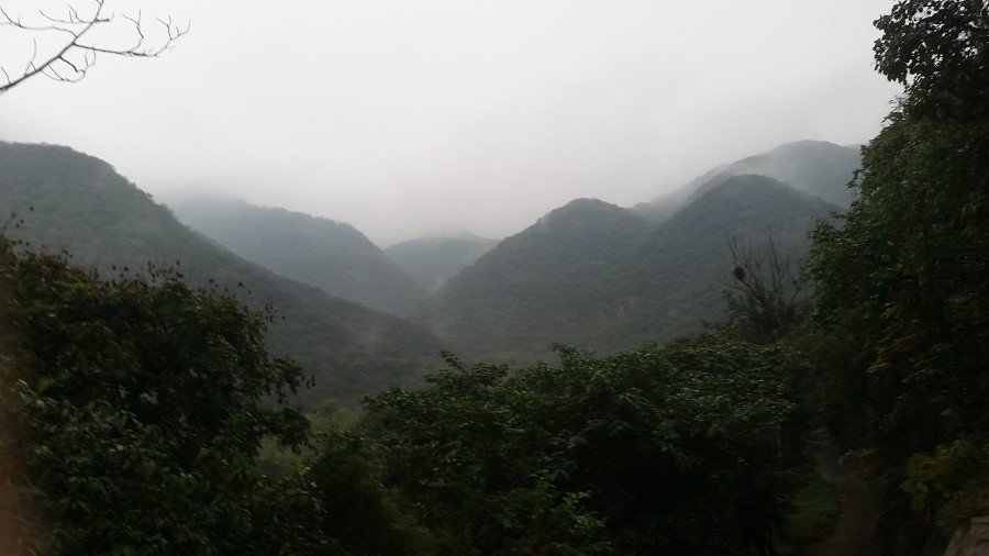 Туманные холмы - 1