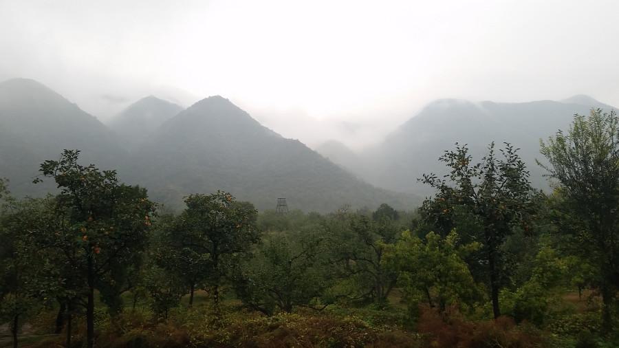 Туманные холмы - 3
