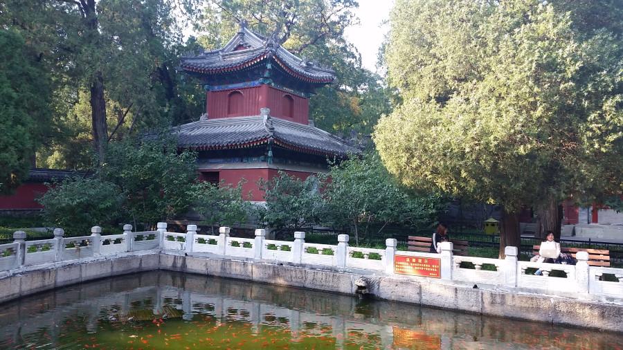 Пруд и пагода - 1