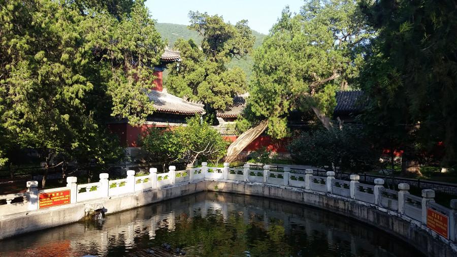 Пруд и пагода - 2