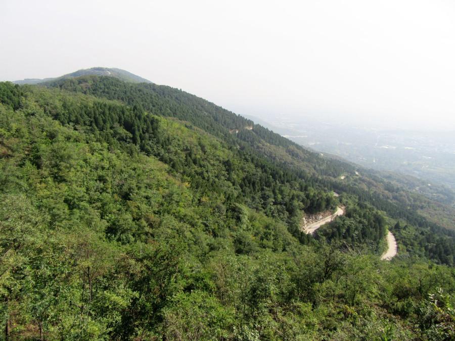 Гряда холмов на юг