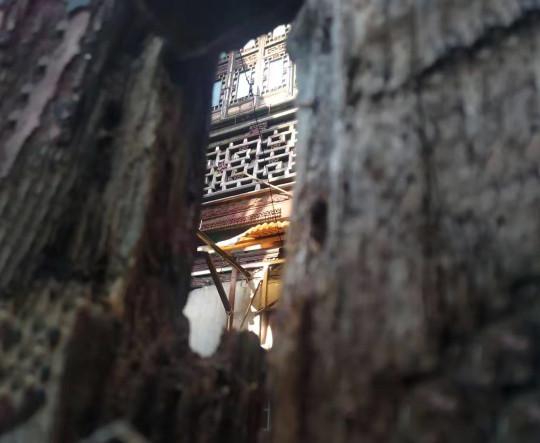 A historic wooden banister at 4 South Kongjia Lane /南孔家弄4号. Photo: Sasha.