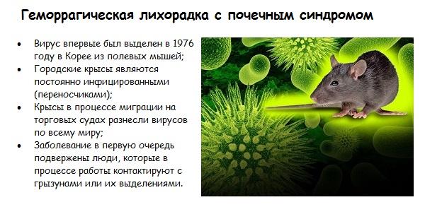 Эпидемия геморрагической лихорадки в Саратове 2019.