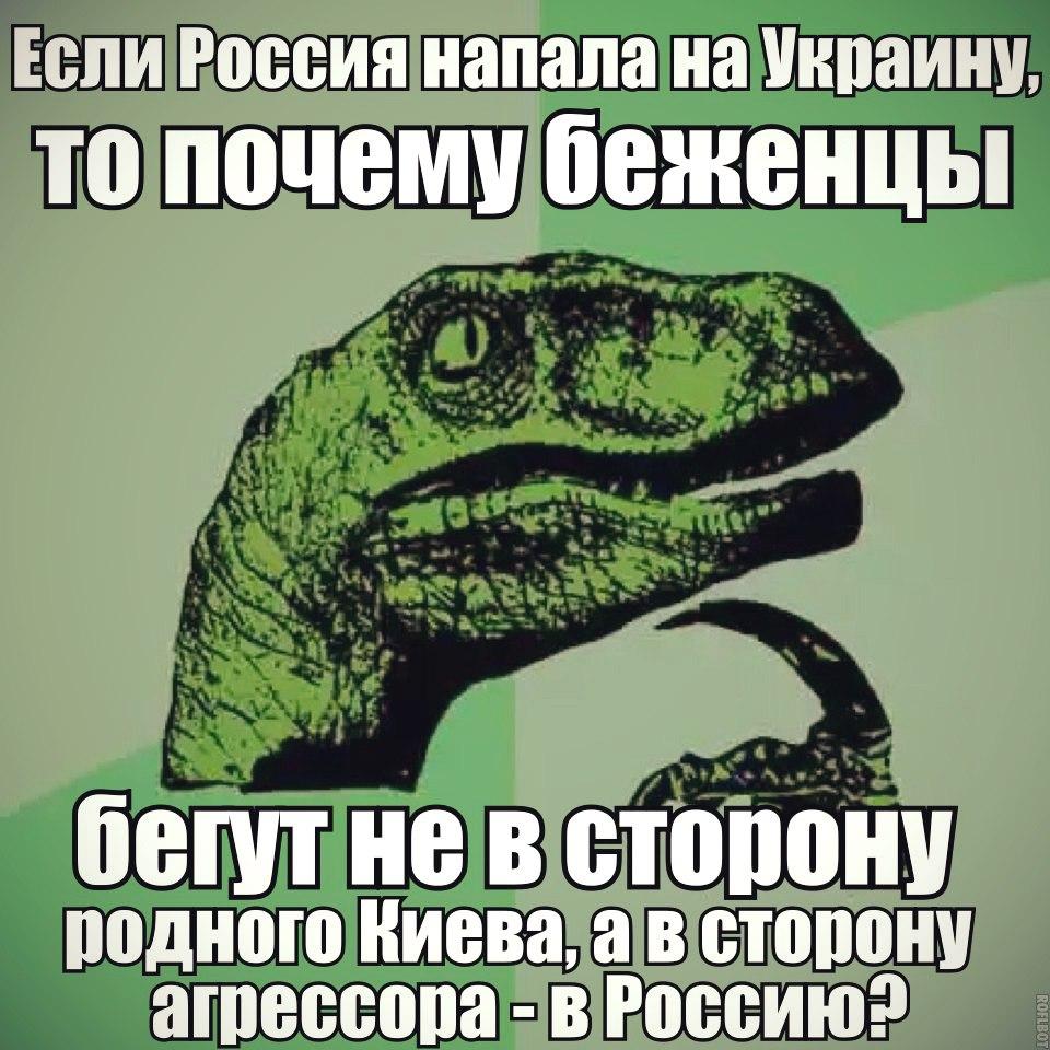 oZQybohv1AY