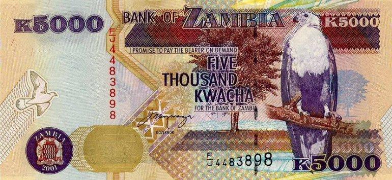 замбийская Квача