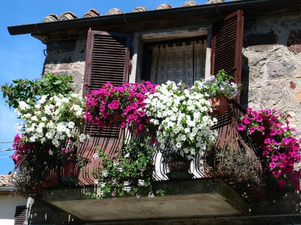 Оформляем-балкон-цветами010