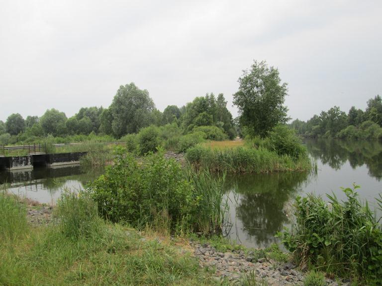 белозерск ловля в канале