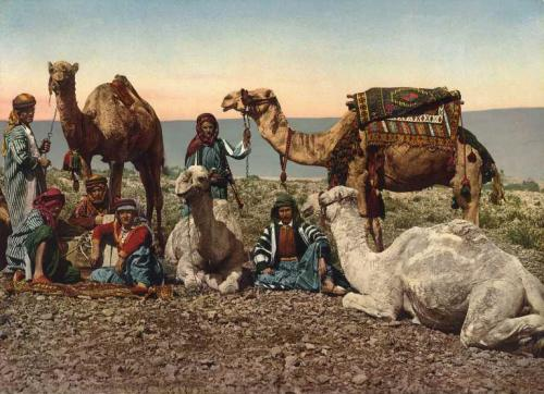 Племя берберов.jpg
