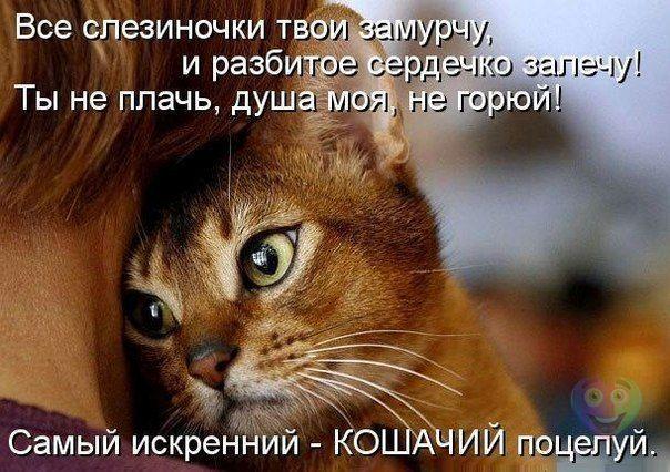 Немного юмора oOmGHhJoV34