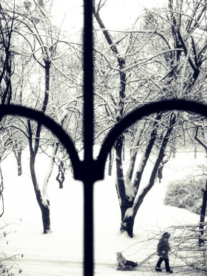 snow 0091_14%