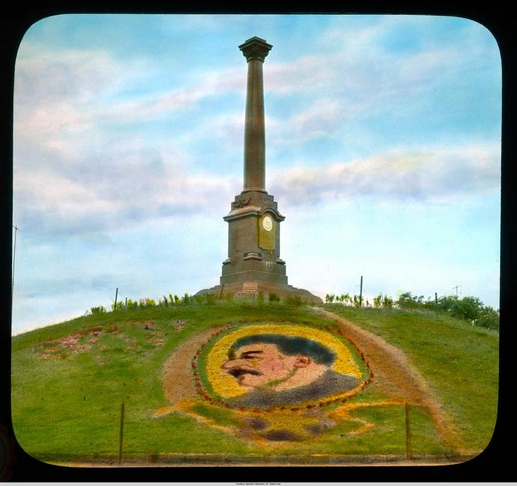 Цветы-Сталин