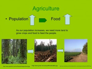 the-causes-of-deforestation-8-728.jpg