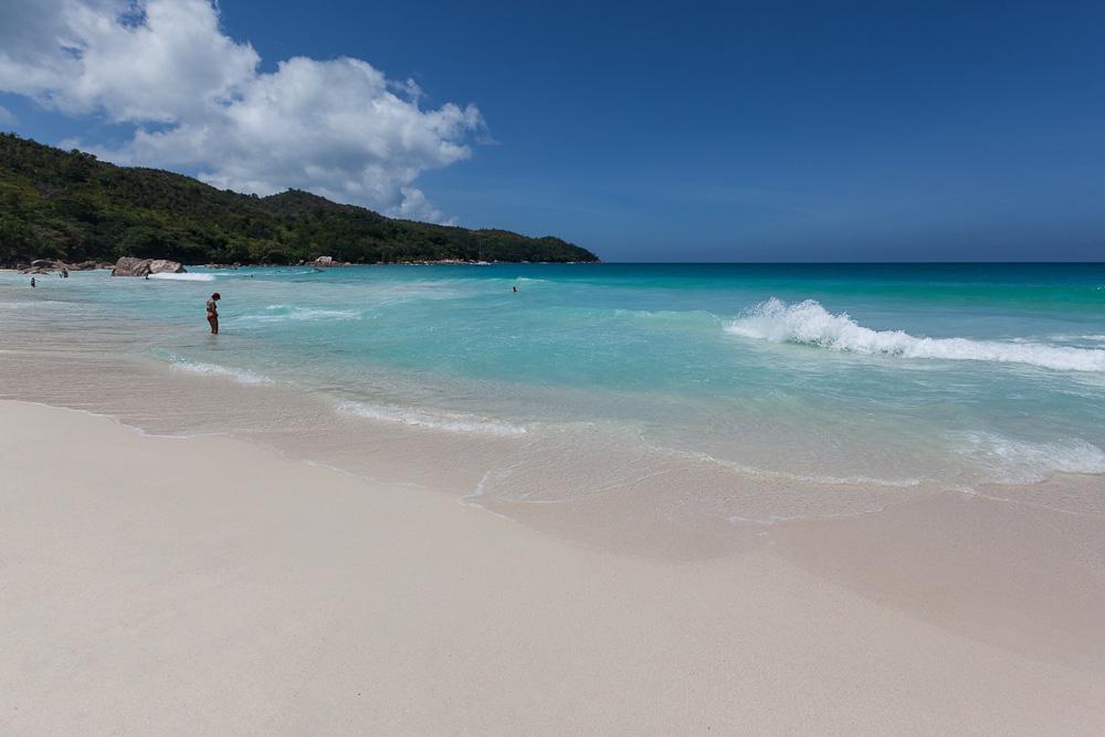 змеехвостки фото сейшелы пляж которые сделаны