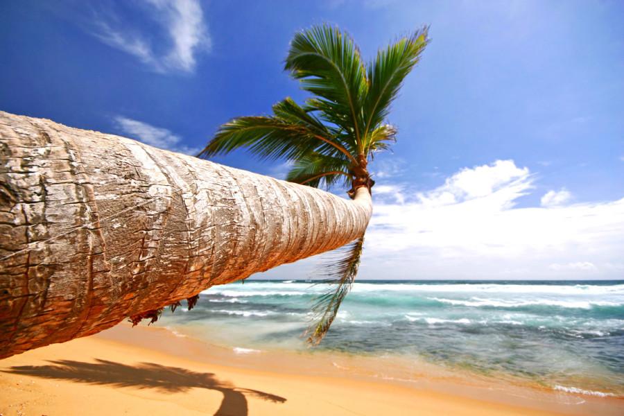 Прекрасные_пляжи_Шри-Ланки