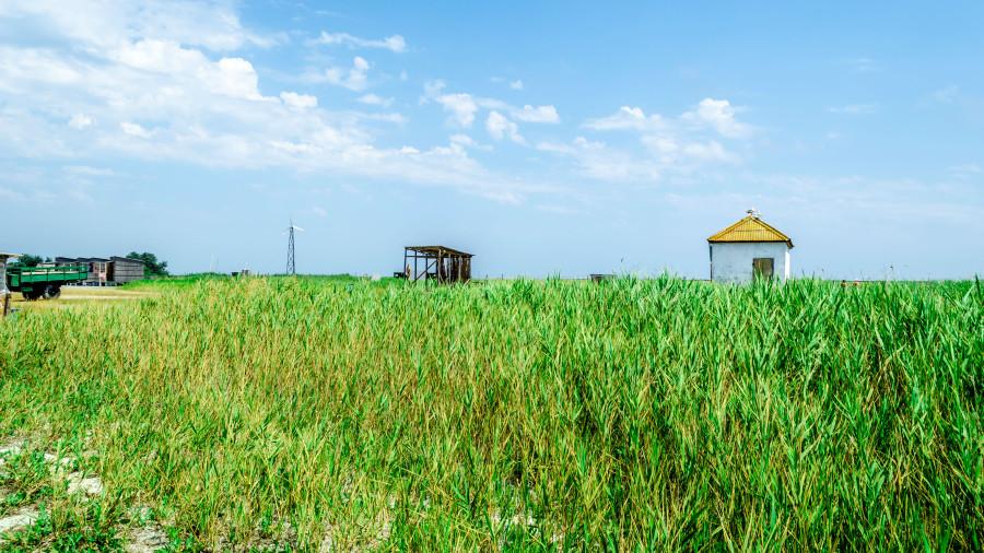 Украина, Херсон, Скадовск, отдых в Скадовске, квартиры в Скадовске, снять квартиру в Скадовске, квартиры посуточно в Скадовске, отели в Скадовске, Остров Джарылгач, Черное море, отдых на черном море, достопримечательности Скадовска, что посмотреть в Скадовске, достопримечательности Херсона, что посмотреть в Херсоне, как добраться в Скадовск, как добраться на Джарылгач, что взять с собой на Джарылгач, дикарем на Джарылгаче, в палатках на Джарылгач