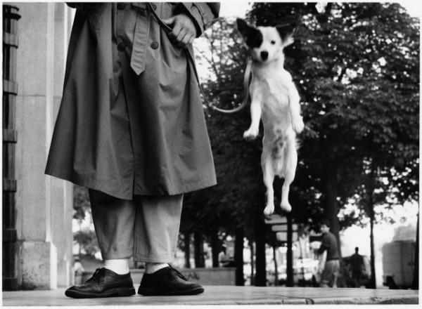 parizh-1989-avtor-elliott-ervitt_thumbnail
