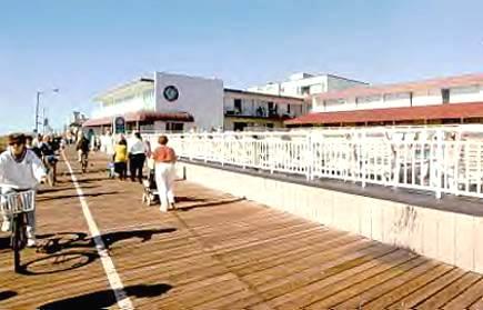 Ocean City Nj Cafe Beach Club Tree Lady