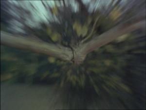 Arthur is Dead (19)