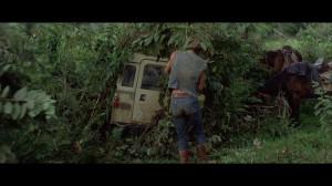 Transport problems (29)