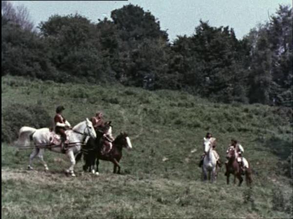 River brawl (150)