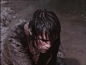 River brawl (72)