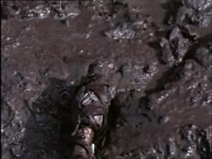 River brawl (51)
