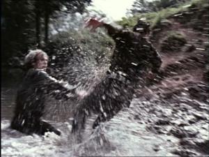 River brawl (23)