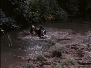 River brawl (20)
