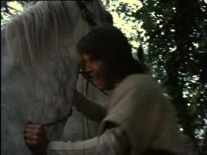 The Horses (43b)