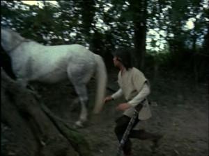 The Horses (42)