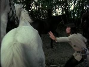 The Horses (41)
