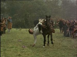 Horse event (15)