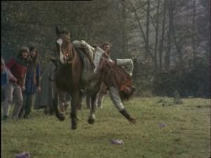 Horse event (4)