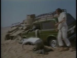 Desert showdown (7)