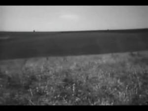 Escape (32)