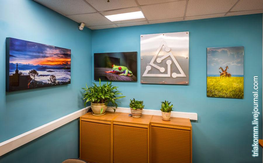 Фотоработы на дереве в офисе ТРИА