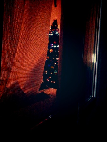 ночь елка