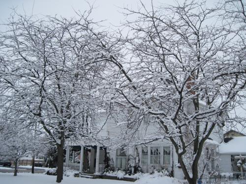 Snow Laden View 2